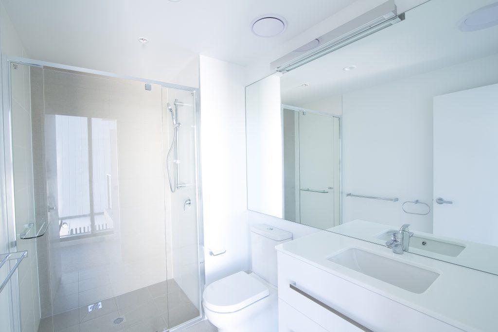 Micro-Framed Vanity Mirror & Semi-Frameless Shower Screen