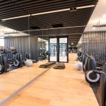 Frameless Gym Mirrors