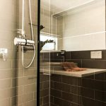 Frameless Shower Screen with Polished Silver Knob